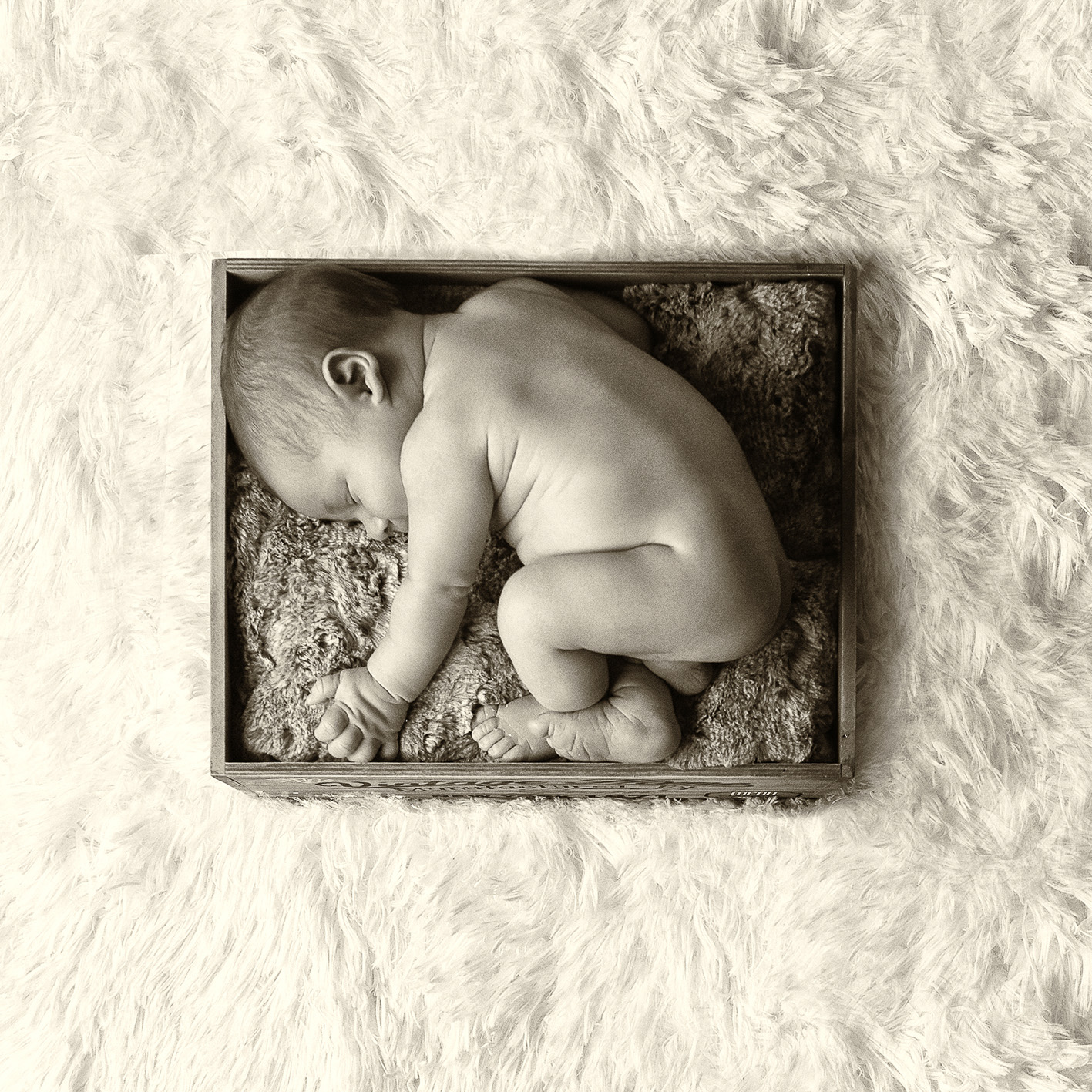 newborn-tagg-photography-5